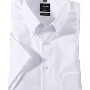 OLYMP Luxor modern fit Short Sleeve Uni Button-Down